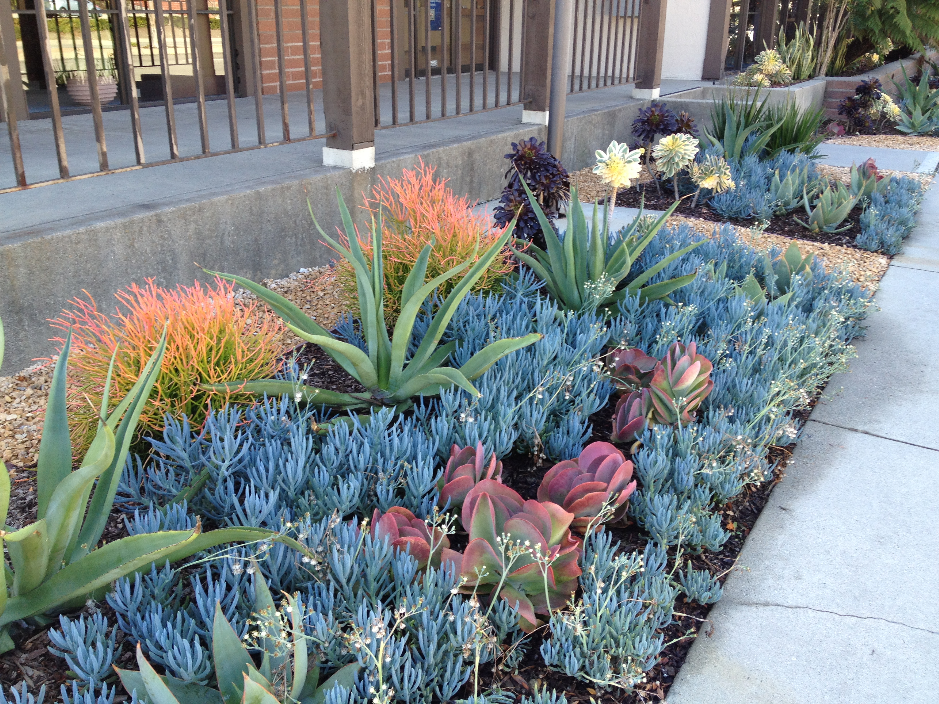 Landscape Contractor Los Angeles Ca Wcgm Inc