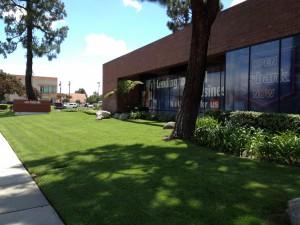 Landscape Maintenance in Downey - Turf