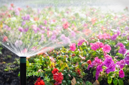 New Watering Schedule for LADWP Customers